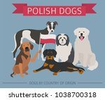 dogs by country of origin.... | Shutterstock .eps vector #1038700318