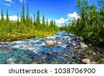Forest River Natural Landscape