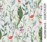 herbs and wild flowers vector... | Shutterstock .eps vector #1038731329