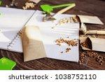 spring garden preparation for... | Shutterstock . vector #1038752110