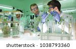 team of food researchers... | Shutterstock . vector #1038793360
