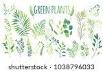 vector cartoon abstract green... | Shutterstock .eps vector #1038796033