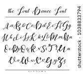 handwritten calligraphy font.... | Shutterstock .eps vector #1038833794