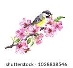 song bird on cherry blossom... | Shutterstock . vector #1038838546
