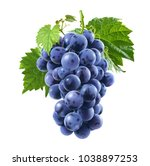 raw blue grapes bunch isolated...