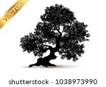 tree silhouette isolated on... | Shutterstock .eps vector #1038973990