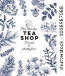 beautiful vector hand drawn tea ... | Shutterstock .eps vector #1038987088