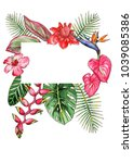 watercolor drawing of tropical... | Shutterstock . vector #1039085386