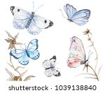 Stock vector vector illustration of watercolor butterflies isolated on white background 1039138840