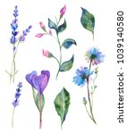 watercolor painted collection... | Shutterstock .eps vector #1039140580