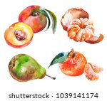 watercolor painted collection... | Shutterstock .eps vector #1039141174