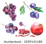 watercolor painted collection... | Shutterstock .eps vector #1039141180
