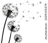 silhouette of a dandelion on a... | Shutterstock . vector #1039155379