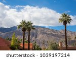 view of the palm trees in...   Shutterstock . vector #1039197214