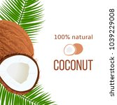 whole and cracked ripe coconuts ... | Shutterstock .eps vector #1039229008