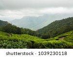 tea plantation  munnar  india | Shutterstock . vector #1039230118