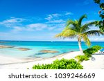 Small photo of Palm tree, blue sea, sky in Great Stirrup Cay, Bahamas. Tropical beach with white sand and turquoise water. Summer vacation, recreation, relax. Paradise, peace, romance. Travel, traveling, wanderlust