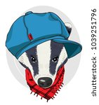 vector badger with blue cap and ... | Shutterstock .eps vector #1039251796