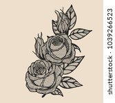 rose vector lace by hand... | Shutterstock .eps vector #1039266523