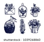 crocus  tulips  hyacinth  lily... | Shutterstock .eps vector #1039268860
