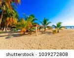 isla mujeres. mexico  november...   Shutterstock . vector #1039272808