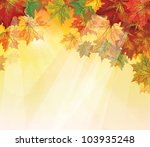 Vector Of Autumnal Leaves On...