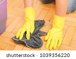 close up of woman cleaning the... | Shutterstock . vector #1039356220