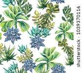 Succulents Plants Watercolor...