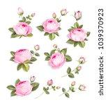 spring flowers set over white...   Shutterstock .eps vector #1039370923