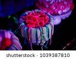 girlish birthday party food  ... | Shutterstock . vector #1039387810