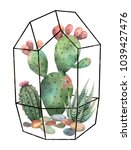 watercolor composition of cacti ... | Shutterstock . vector #1039427476