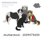 dogs by country of origin.... | Shutterstock .eps vector #1039475650