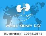 vector symbol of world kidney... | Shutterstock .eps vector #1039510546