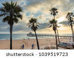 palm trees on manhattan beach... | Shutterstock . vector #1039519723