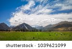 panoramic landscape view with... | Shutterstock . vector #1039621099