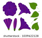 isolation elements of violet or ... | Shutterstock .eps vector #1039622128