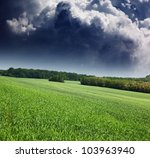 Summer Field And Dramatic Sky...