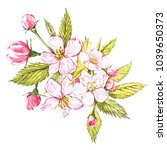 watercolor hand drawn apple... | Shutterstock . vector #1039650373