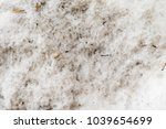 dirty snow as background | Shutterstock . vector #1039654699