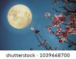 romantic night scene  ... | Shutterstock . vector #1039668700
