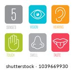 icon set of five human senses... | Shutterstock .eps vector #1039669930