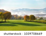 fields and trees in autumn ...   Shutterstock . vector #1039708669