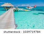 south ari atoll  dhidhoofinolhu ... | Shutterstock . vector #1039719784