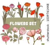 set flowers  red and pink | Shutterstock .eps vector #1039761448