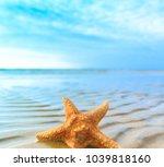 star beach sea  | Shutterstock . vector #1039818160