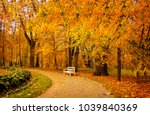 Autumn Park Bench. Tree Alley...