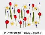 red tulips  narcissus and... | Shutterstock . vector #1039855066