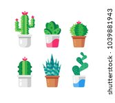 set of different cactuses in... | Shutterstock .eps vector #1039881943