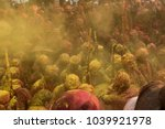 barsana  india   february 25 ... | Shutterstock . vector #1039921978