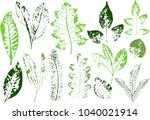 vector branches and leaves.hand ...   Shutterstock .eps vector #1040021914